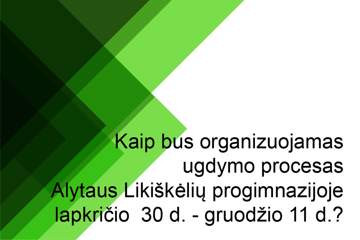 Ugdymo proceso organizavimas lapkričio 30 d. - gruodžio 11 d.