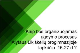 Ugdymo proceso organizavimas lapkričio 16-27 d.